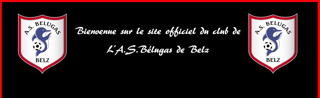 Site officiel des belugas de Belz